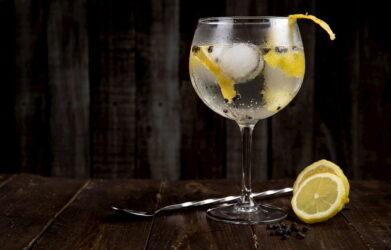 Best Gin Mixers